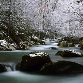 Joel E Blyler - Tremont Treasure Great Smoky Mountains National Park