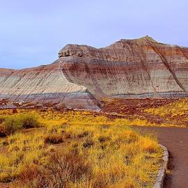 Barbara Zahno - Triassic Landscape