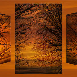 Thomas Woolworth - Triptychs Spring Tree Branches Twilit Moment 01
