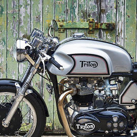 Triton In Colour  - Tim Gainey