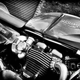 Triumph Thruxton 1200 R - Tim Gainey