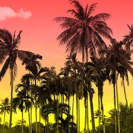 tropical 9 - Mark Ashkenazi