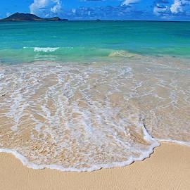 Kerri Ligatich - Tropical Hawaiian Shore
