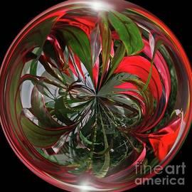 Brenda Spittle - Tropical Orb