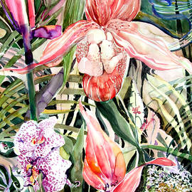 Mindy Newman - Tropical Orchids