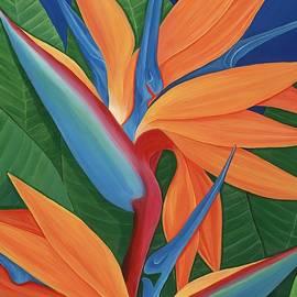 Lisa Bentley - Tropical Paradise