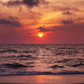 Daphne Sampson - Tropical Sunset
