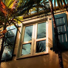 Karen Wiles - Tropical Window Reflections
