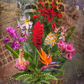 Hanny Heim - Tropical Wonders