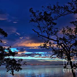Elmar Langle - True Blue Skies