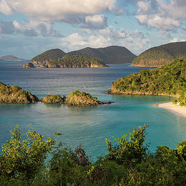 Adam Romanowicz - Trunk Bay Morning