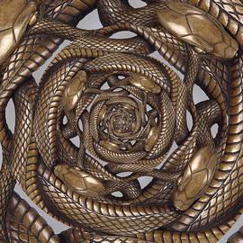 Nicholas Romano - Tsuba Metal Snake Droste