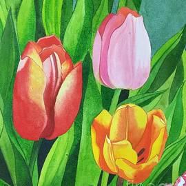 Pushpa Sharma - Tulip Trio