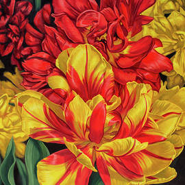 Fiona Craig - Tulipomania 14 Red and Yellow
