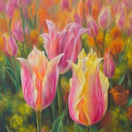 Fiona Craig - Tulipomania 6 Blushing Beauties