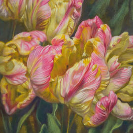 Fiona Craig - Tulipomania 7 Pink and Yellow Parrots