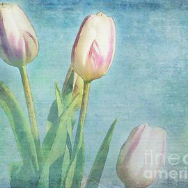 Jutta Maria Pusl - Tulips Day
