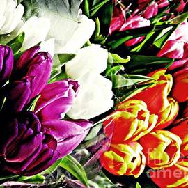Sarah Loft - Tulips For Sale 2