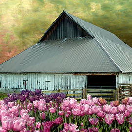 Jeff Burgess - Tulips in Skagit Valley