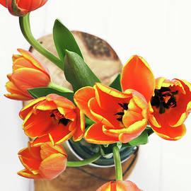 Stephanie Frey - Tulips