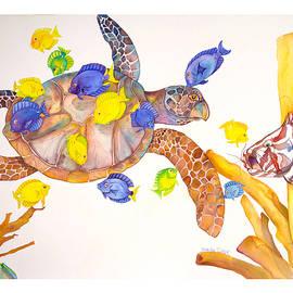 Brenda Tucker - Turtle Cleaning Station