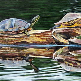 Marilyn  McNish - Turtle Family