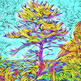 Joel Bruce Wallach - Twilight Autumn Glow - Colorado Mountain Pine