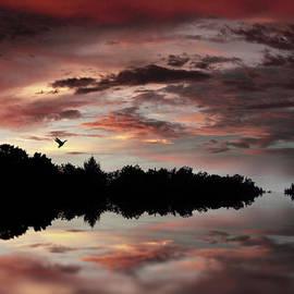 Twilight Flight - Jessica Jenney