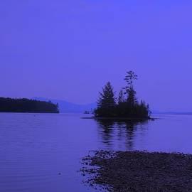 John Kenealy - Twilight Island