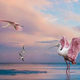 Brian Tarr - Twilight on The Gulf