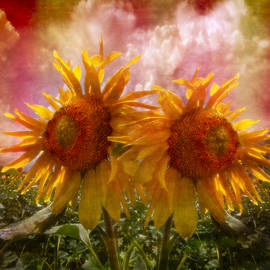 Debra and Dave Vanderlaan - Twin Sunflowers