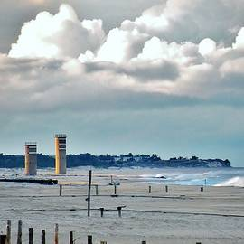 Kim Bemis - Twin Towers Sea Mares