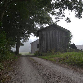 Sue McGlothlin - Two barns