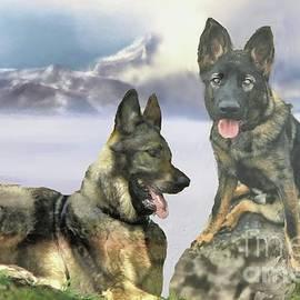 Janette Boyd and John Noyes - Two German Shepherds