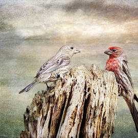 Barbara Manis - Two Little Love Birds
