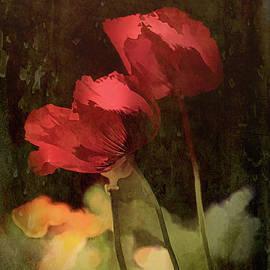 Elaine Teague - Two Poppies