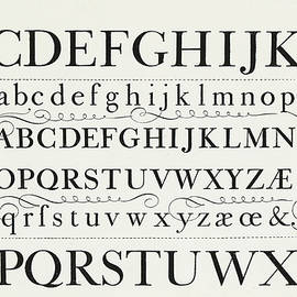 Typefaces from the script of George Shelley - George Shelley