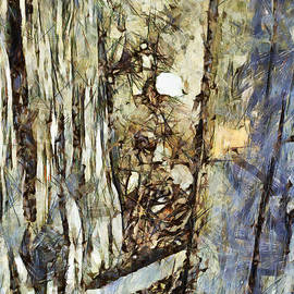 Sir Josef Social Critic - ART - Una storia da raccontare