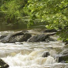 Mother Nature - Unami Creek at Trinity Bridge #2
