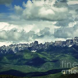 Janice Rae Pariza - Uncompahgre Colorado Alpine