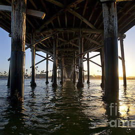 Under Newport Pier - Sean Davey