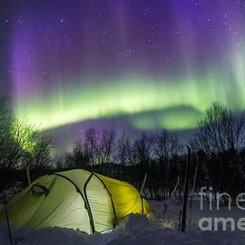 Mikko Karjalainen - Under the Auroras