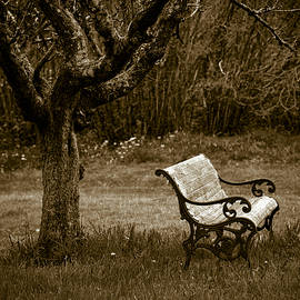 Under The Old Apple Tree - Frank Tschakert