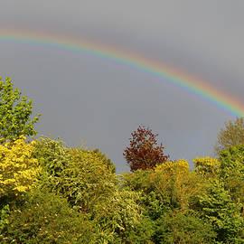 Rumyana Whitcher - Under The Rainbow