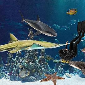 Ericamaxine Price - Underwater Danger