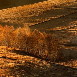 Catalin Fudulu - Undulations autumn