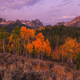 Vishwanath Bhat - Unique image of Sawtooth mountains with autumn trees in the foreground