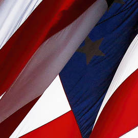 Linda Phelps - United States Flag Abstract