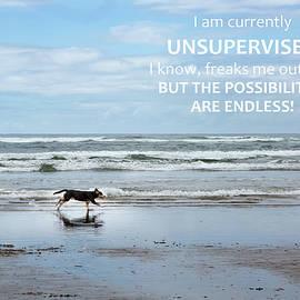 Unsupervised - Rebecca Cozart
