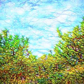Joel Bruce Wallach - Untamed Meadow